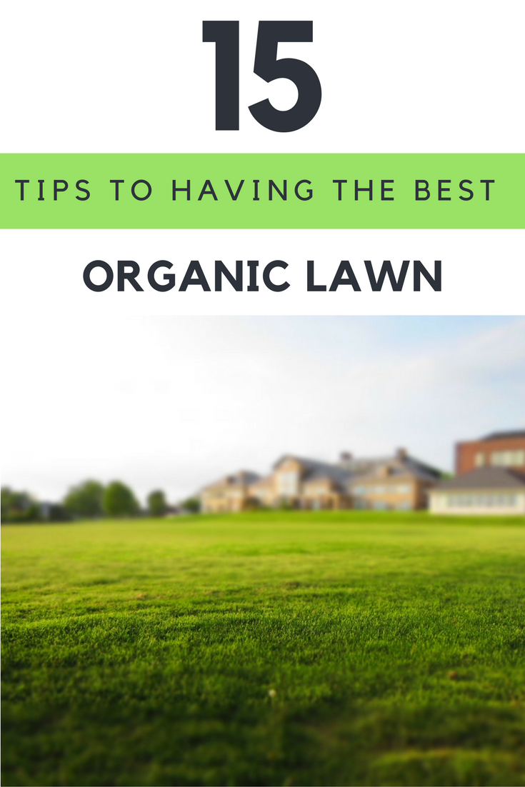 15 Tips to Having The Best Organic Lawn Ever. | Ideahacks.com