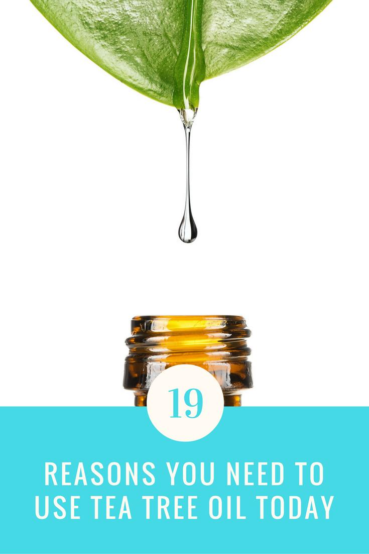 19 Reasons You Need To Use Tree Tea Oil Everyday. | Ideahacks.com