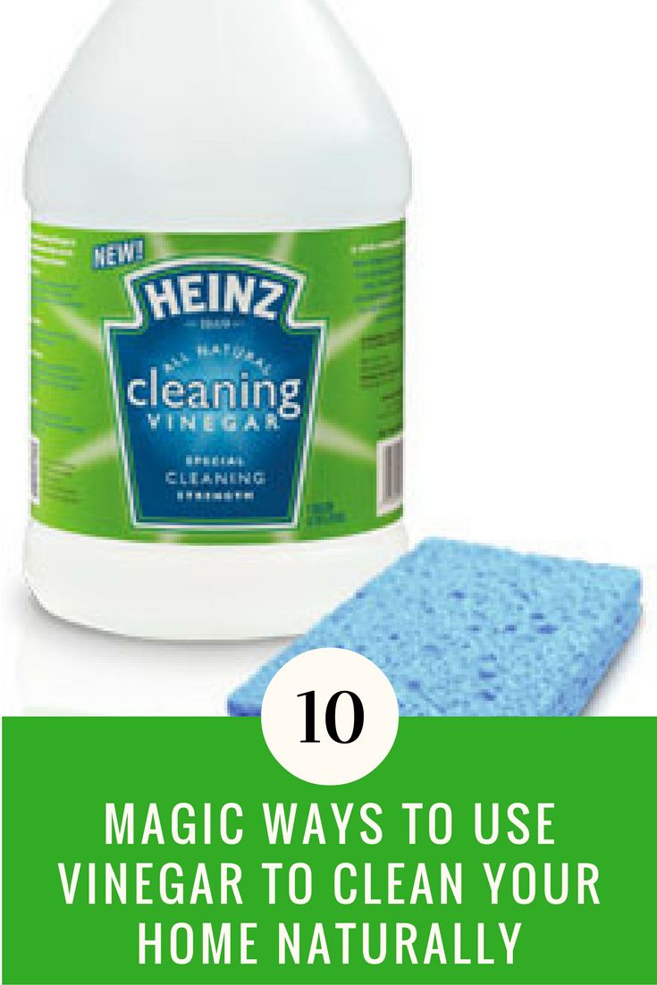 Cleaning With Vinegar 10 Ways To Clean Your Home Naturally