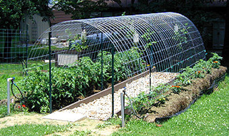 21 cheap easy diy greenhouse designs you can build yourself re mesh arch solutioingenieria Image collections