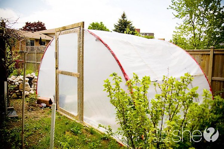 21 Cheap & Easy DIY Greenhouse Designs You Can Build Yourself
