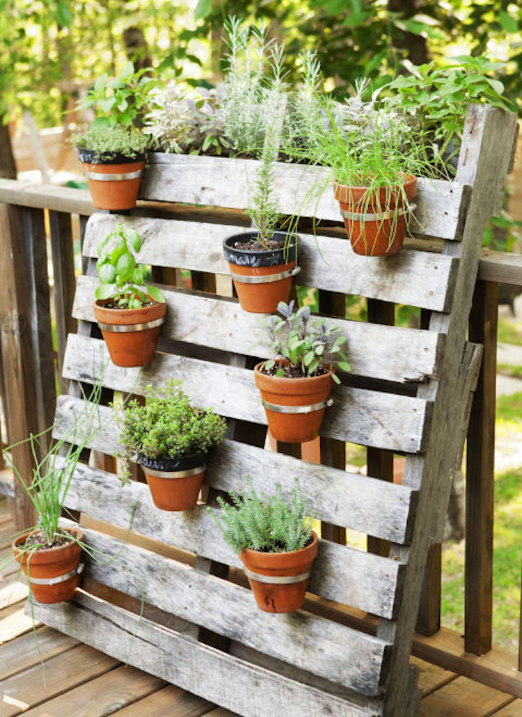 ideas for herb garden containers