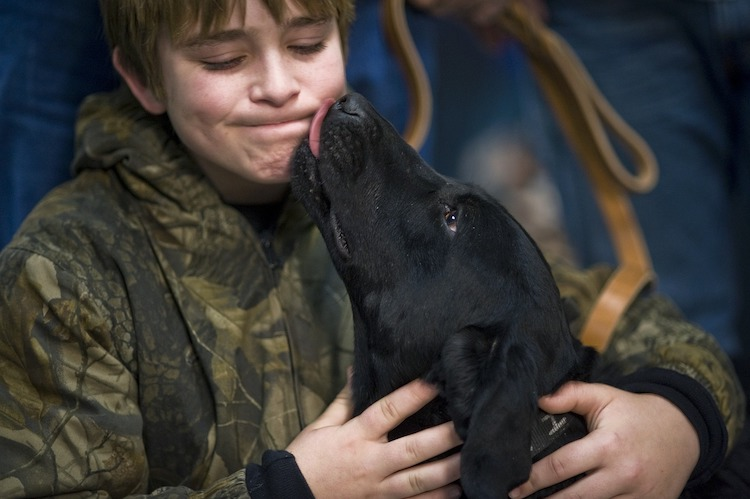 Why Do Dogs Lick? (10 Explanations & Why You Should Care in The First Place)