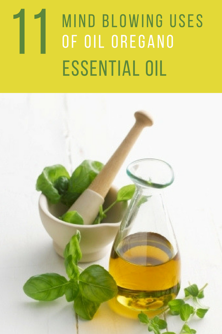 Oil Of Oregano Benefits: 11 Things You Didn't About Oregano Oil. | Ideahacks.com