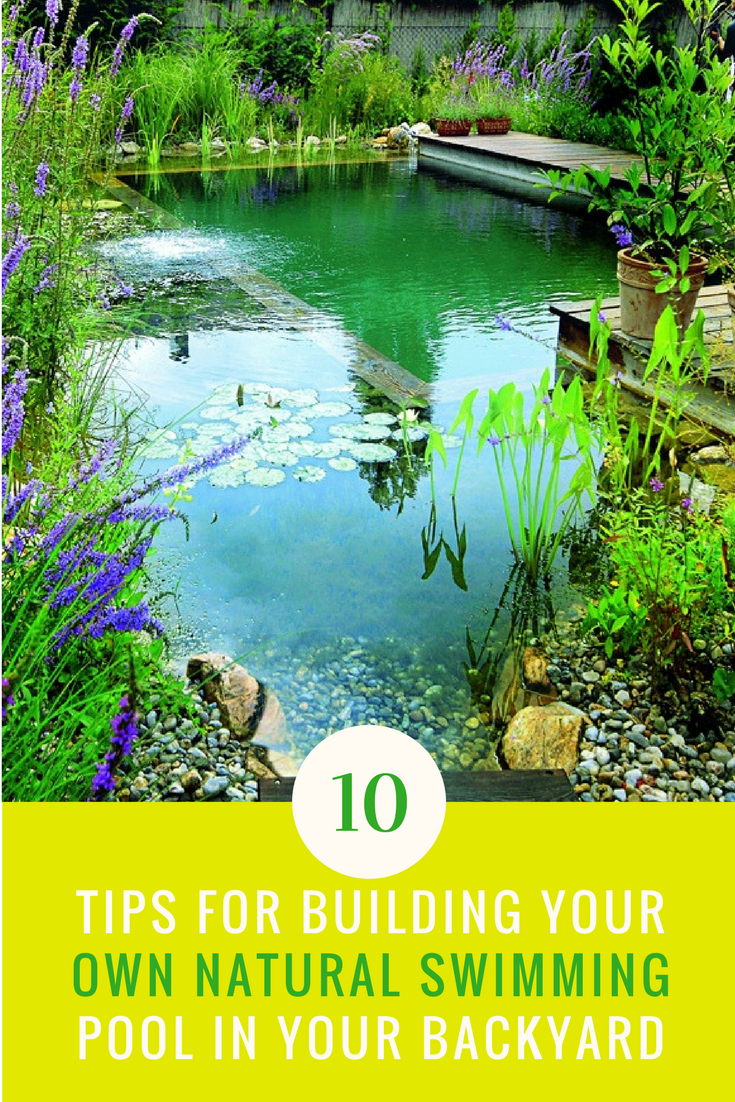 10 Tips For Building Your Own Natural Swimming Pool (DIY Style)