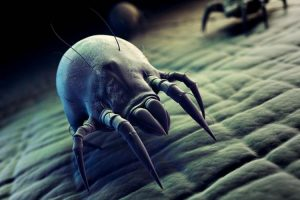 10 Ways To Get Rid Of Dust Mites Without Using Harmful Chemicals