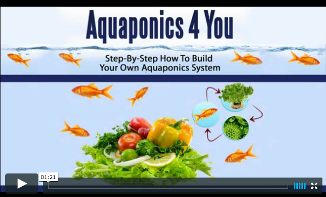 Aquaponics 4 You Video