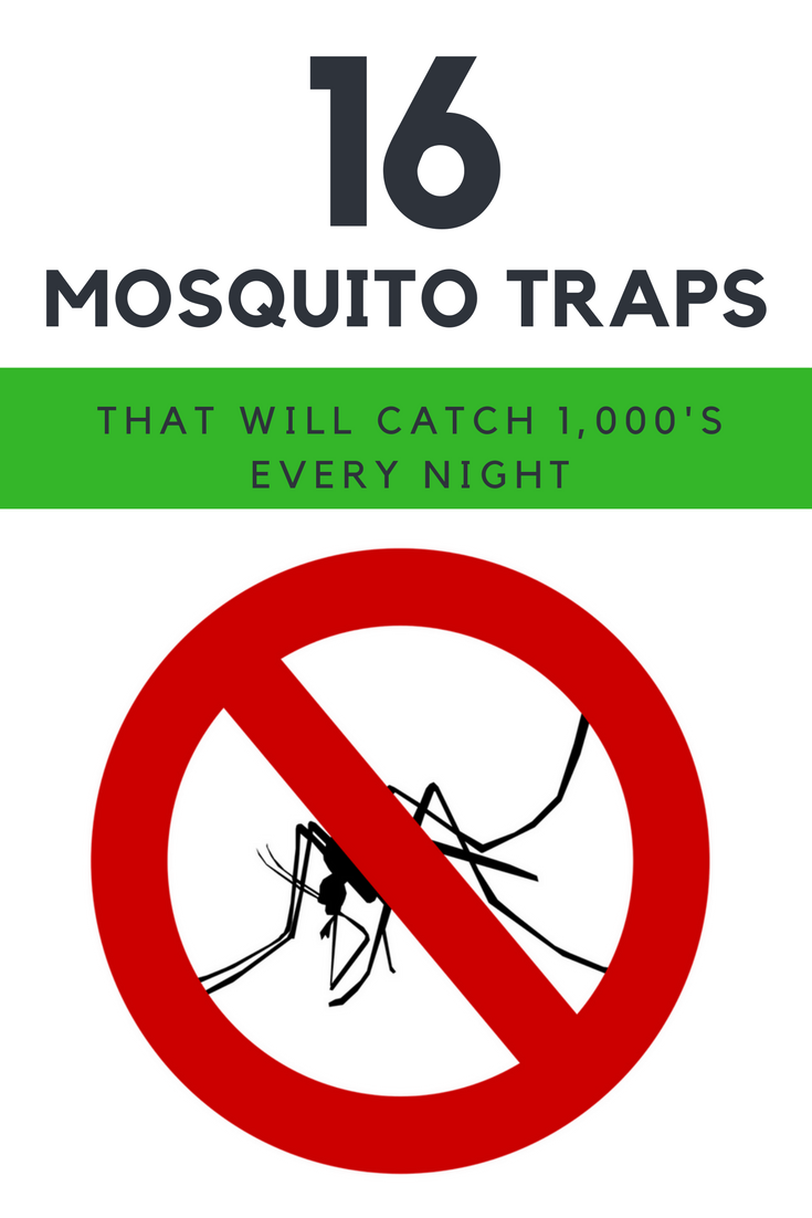 16 Best Mosquito Trap Ideas That Will Catch 1,000's of Mosquitos Every Night. | Ideahacks.com