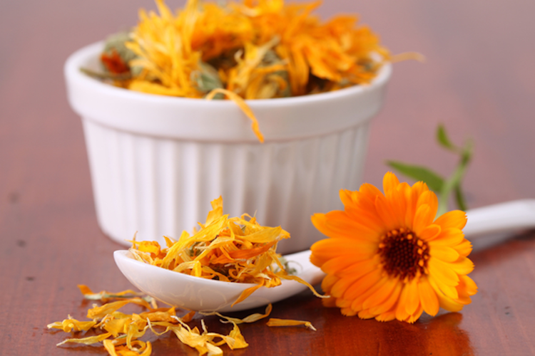 Calendula for Hair Dye