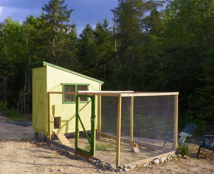 Downeast Thunder Farm Chicken Coop