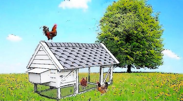 Harriet's House Chicken Coop