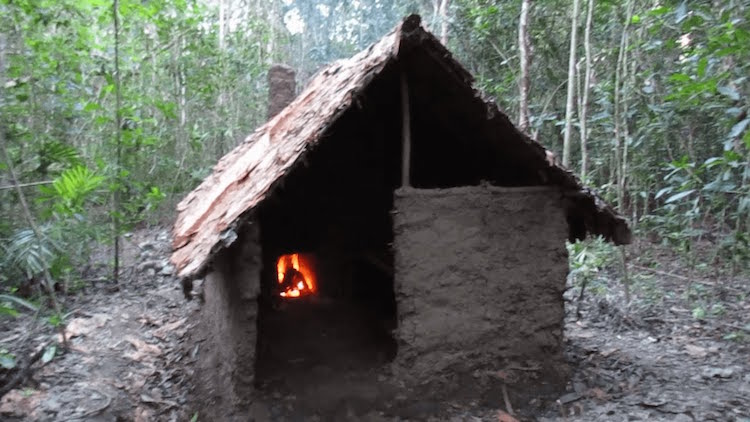 Primitive Shelter Idea