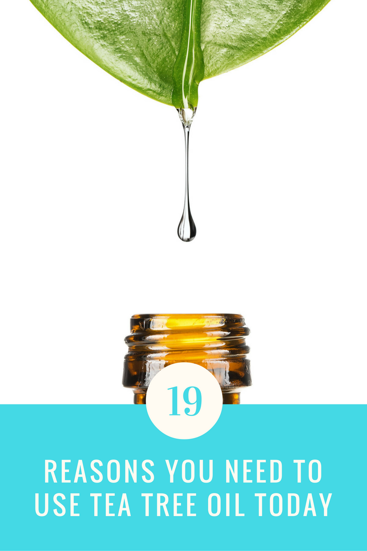 19 Reasons You Need To Use Tree Tea Oil Everyday. | Ideahacks.com