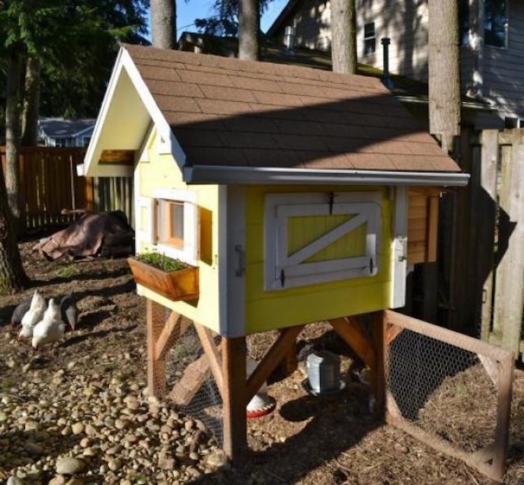 Trictle's Chicken Coop