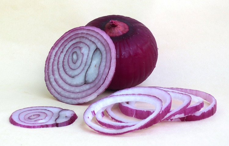 Best Onion Choppers Reviews
