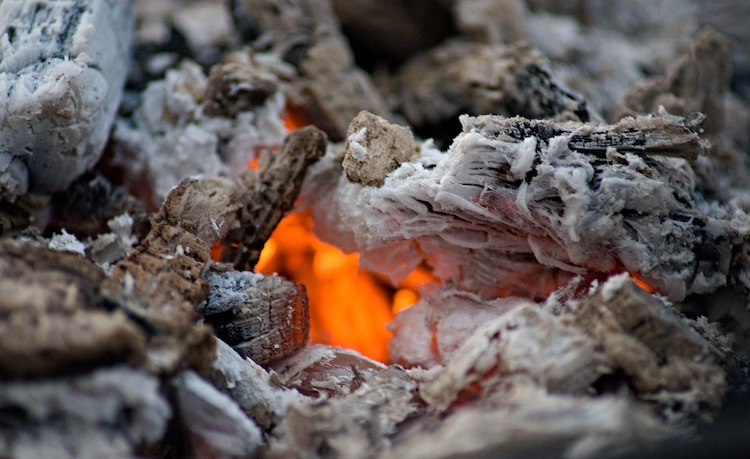 10 Surprising Ways to Use Wood Ash in Your Garden & Home