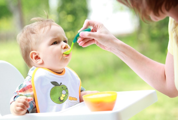 Best Baby Food Makers Reviews