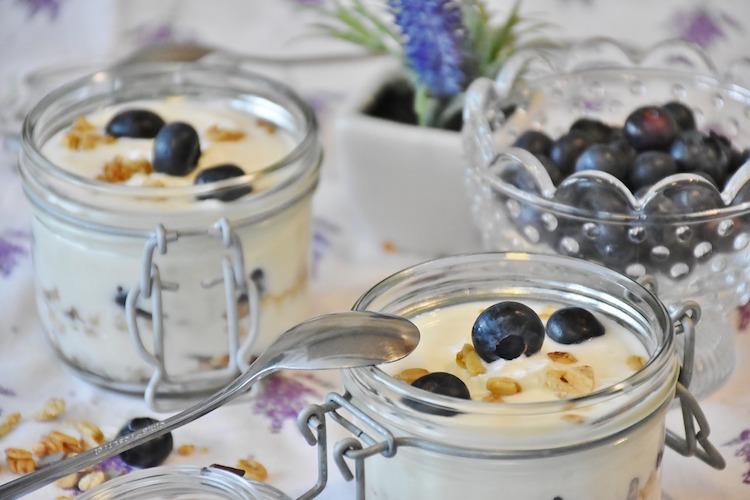 Best Yogurt Makers Reviews