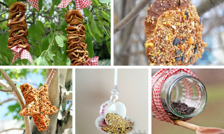 24 Ways to Make Your Own Birder Feeder For Your Garden or Backyard