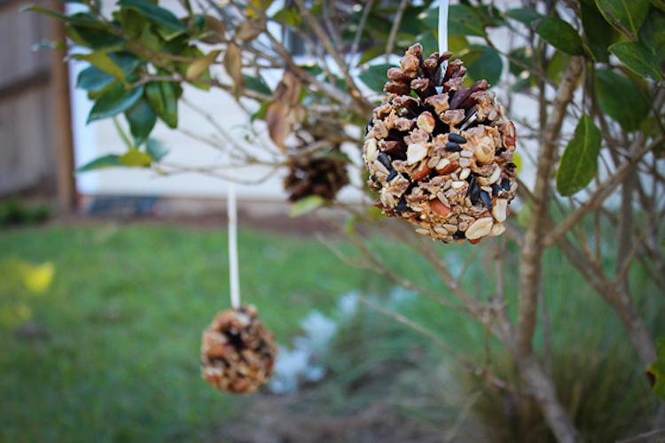 Peanut Butter Pine Cone Feeder