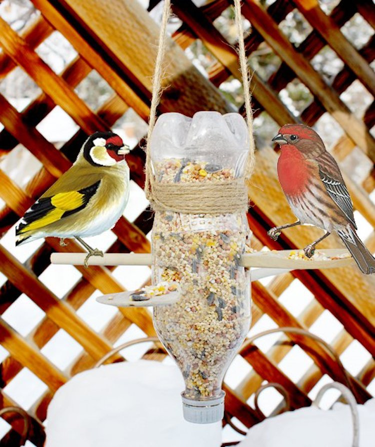 Recycled Bottle Bird Feeder