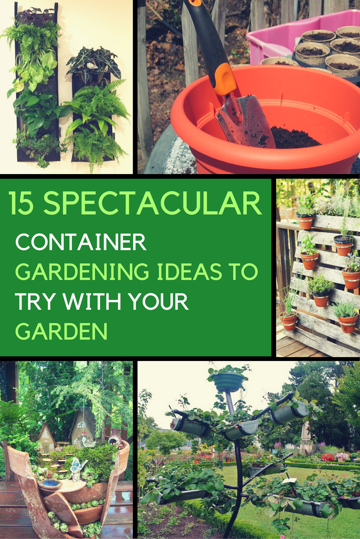 15 Spectacular Container Gardening Ideas To Try With Your Garden. | Ideahacks.com