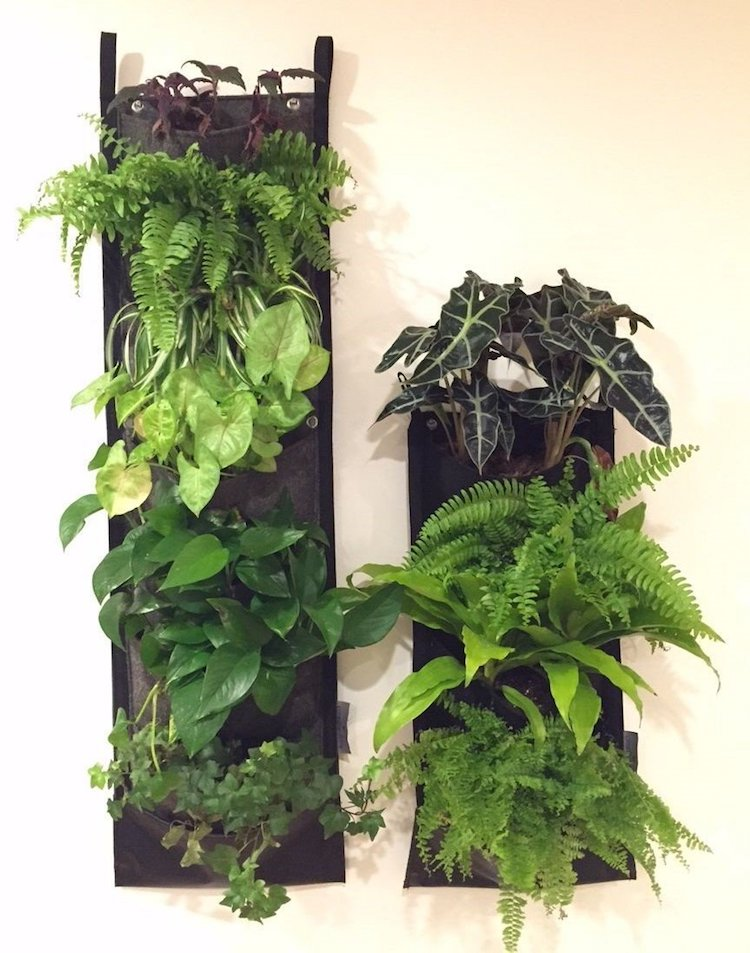 Hanging Pocket Planters