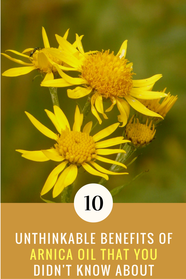 10 Unthinking Benefits of Arnica Oil That You Didn't Know. | Ideahacks.com
