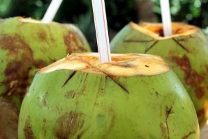 Drinking Coconut Water