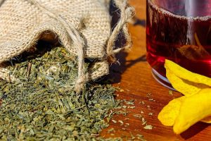 Medicinal Herbs For Survival