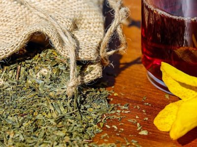 Medicinal Herbs For Survival