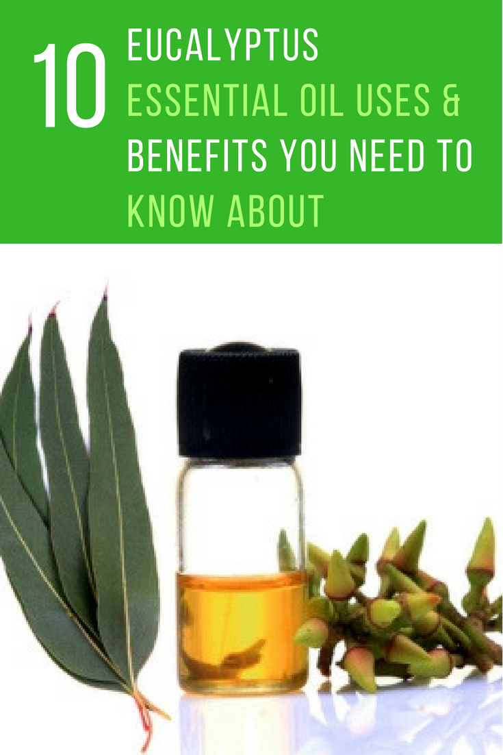 10 Eucalyptus Essential Oil Uses & Benefits You Need To Know About. | Ideahacks.com