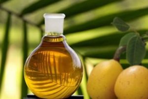 Marula Oil Uses