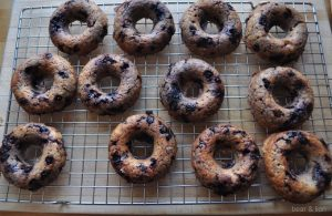 Blueberry Oatmeal Muffin Donuts
