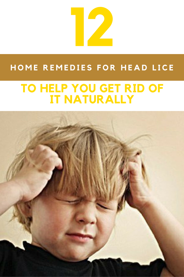 12 Home Remedies For Lice To Remove It Naturally