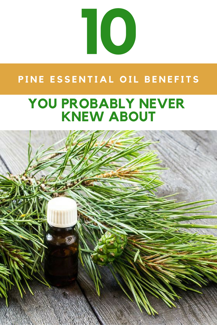 10 Pine Essential Oil Benefits You Never Knew About. | Ideahacks.com
