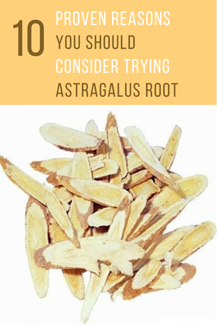 Astragalus Root? 10 Proven Reasons You Should Consider Trying It. | Ideahacks.com
