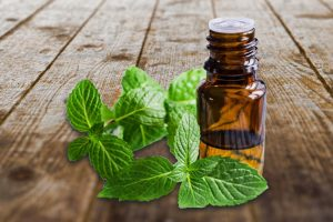10 Reasons Why You Should Start Using Spearmint Essential Oil