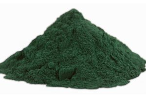 Spirulina Vs. Whey: Which Is Better For Weight Loss?