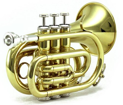 Sky Band Approved Brass Bb Pocket Trumpet