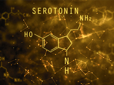 Serotonin Featured Image
