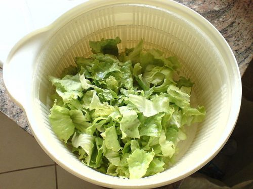 fresh lettuce on a salad spinner